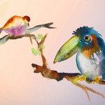 Amour d'Oiseaux