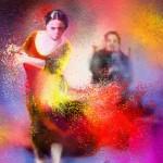 Flamenco 11
