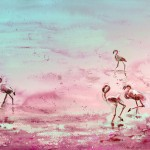 Flamants Roses de Camargue 03