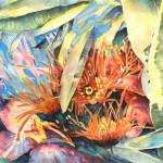Marguerite Orange