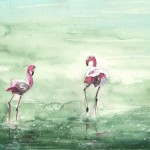 La Camargue – Flamants Roses 02