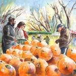 La Camargue – Vendeur d'Oranges