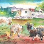 Bélier et Moutons à Akrotiri