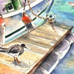 Un Oiseau à Puerto Carmen