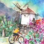 En Vélo dans Les Montagnes