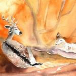 Cerf et Biche