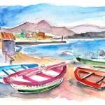 Puerto de Sardina 03