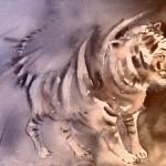 Tigre au Parc de Crocodiles 02